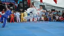 Türkiye Wushu Milli Takımı Dikmende